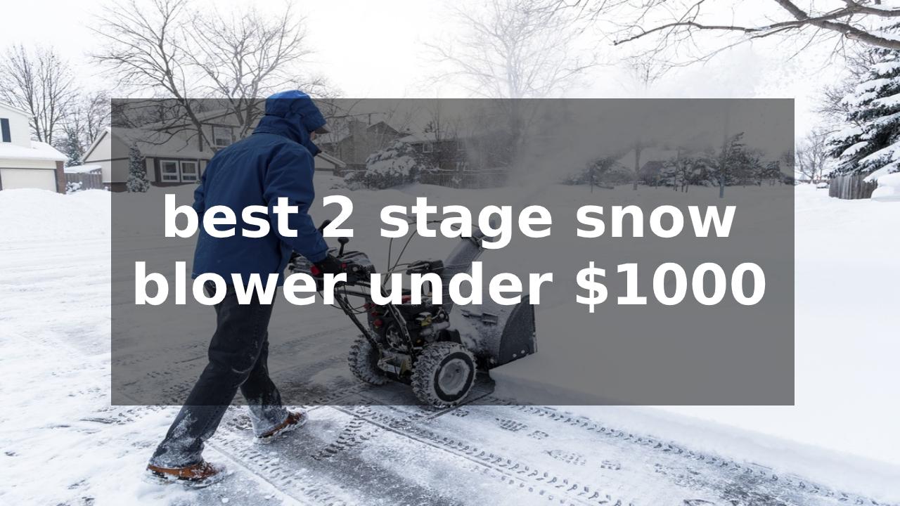 best 2 stage snow blower under $1000